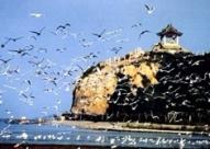 成都 - 秦皇岛